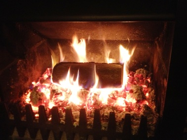 Roaring Fire