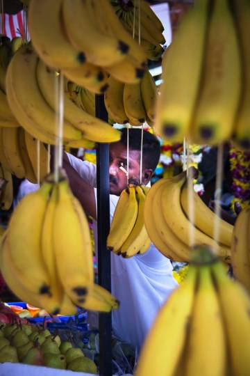 Bananas by Blue Cicada Photography