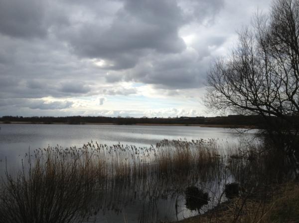 Wintery lake.