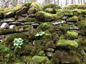 Wall in Wales