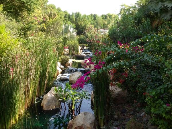 Organic, oasis restaurant - The Farm